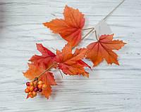 Листья клена осенние с ягодами-2