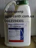 Гербицид Милагро, никосульфурон 40 г/л
