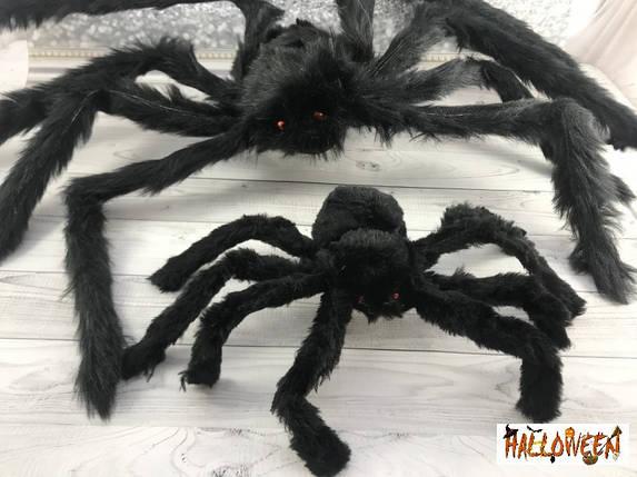 "Декор ""чорний Павук 50 см"", фото 2"
