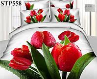Комплект постельного белья Love You Блеск Stp558 КПБ семейный