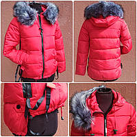 Тёплая спортивная короткая женская куртка, размеры M, XL, фото 1