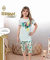 Комплект птичка футболка и капри для девочек