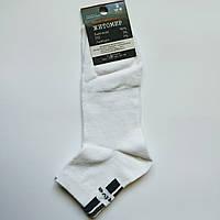 Носки Мужские демисезонные activ белые размер 41-44