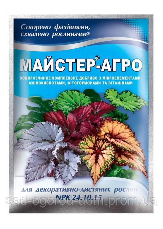 Мастер для декоративно-лиственных растений