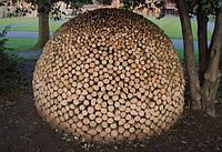 Дрова дубовые колотые