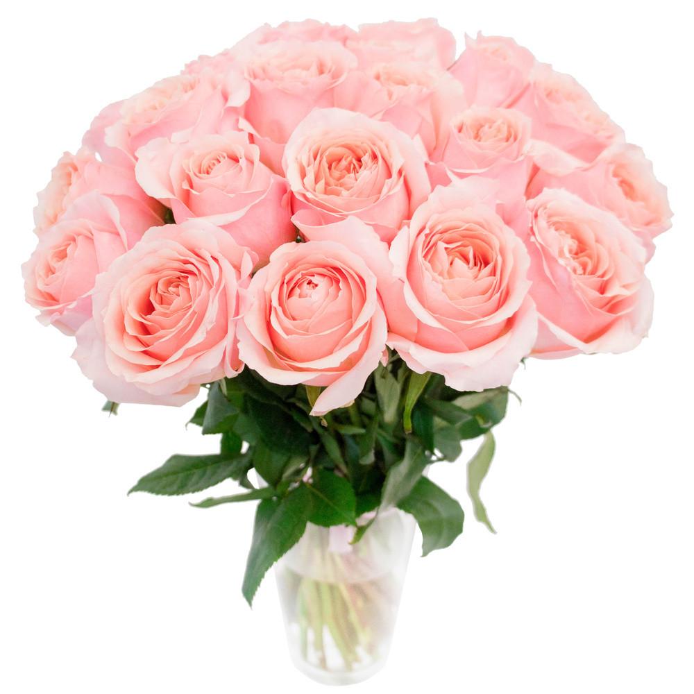 Краска для срезанных цветов розовая