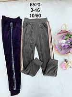 Подростковые велюровые спортивные штаны для девочек подростковые FD Kids,разм 8-16
