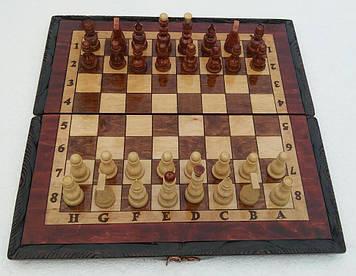 Шахматы 5