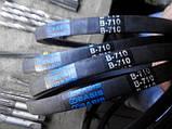 Клиновий ремінь приводний В(Б)-710 Basis, фото 3