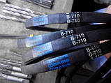 Клиновий ремінь приводний В(Б)-710 Basis, фото 5