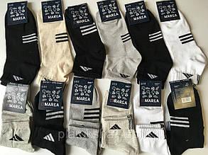 Шкарпетки чоловічі спортивні до 46,