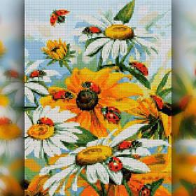 Цветы, фрукты, натюрморты