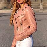 Пудровая укороченная куртка Philipp Plein из натуральной кожи, фото 6