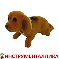Собака на панель автомобиля желтая с качающейся головой