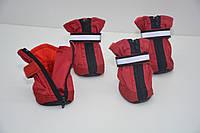Защитная обувь для собак 3х4х7.5 см 4 шт Красный 256912, КОД: 723264