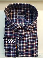Мужская рубашка кашемир Brossard-7592