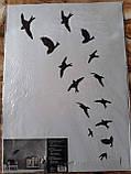 Наклейка настенная Melinera перо/птицы - 69*49,5см, фото 2