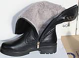 Сапоги женские зимние кожаные на каблуке от производителя модель НИК1012, фото 4
