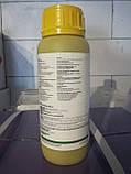 Фунгицид Строби,0,2кг., фото 2