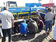 Сівалка прямого посіву СІЧ-4,2 знову приємно дивує українських аграріїв!