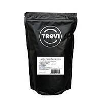 Кофе в зёрнах Trevi Арабика Эфиопия Йор Гачиф 500 г 4820140051559, КОД: 367063