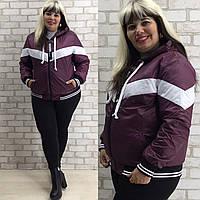 Короткая куртка женская Плащевка на синтепоне Размер 42 44 46 48 50 52 54 56 58 60 62 В наличии 3 цвета, фото 1
