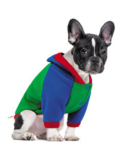 Толстовка для собак Pet Fashion Курт XS-2