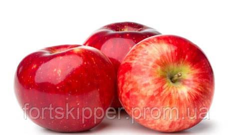 Бо лінія прийому миття і сортування яблук 6000 кг/год Aweta