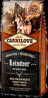 Carnilove Adult Raindeer Grain Free беззерновой сухой корм с мясом северного оленя для собак, 12 кг