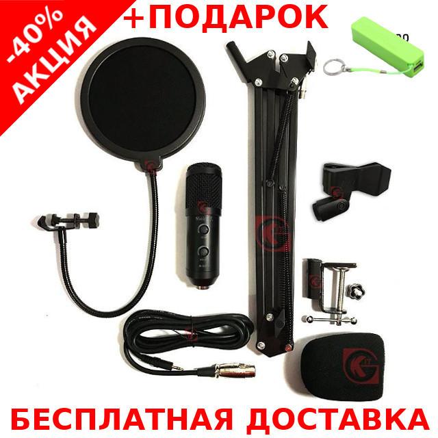 Профессиональный конденсаторный студийный микрофон M-800