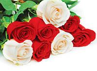"""Пакет подарочный бумажный цветочный """"Большой горизонтальный"""""""