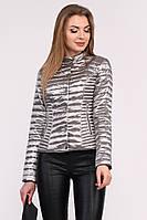 Куртка женская стеганая короткая на кнопках серебро LS-8824-20