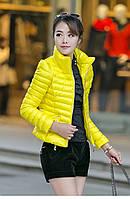 Короткая яркая куртка  5 цветов, фото 1