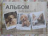 Альбом для рисования 30л СКОБА, фото 5