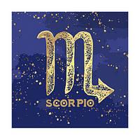 "Картина по номерам Краска ""Металлик"" Знак Зодиака Скорпион 50*50 см КН9513"