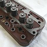 Головка блока цилиндров ЮМЗ Д-65 Д65-1003012, фото 3