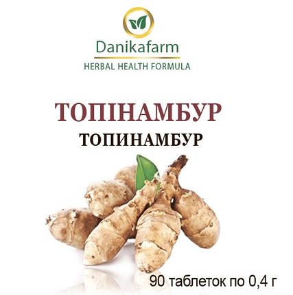 Топинамбур (земляная груша, подземный артишок) (Danikafarm) 90таб., фото 2