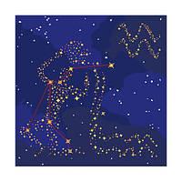 "Картина по номерам Краска ""Металлик"" Знак Зодиака Водолей 50*50 см КН9509"
