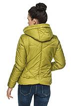 Женская демисезонная куртка с капюшоном Анфиса, фото 2