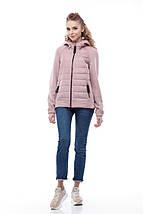 Модная женская куртка бомбер Фреш NEW, фото 3