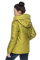 Стильная женская демисезонная куртка Лайма, фото 3
