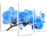 Модульная картина на холсте YS-Art 96х70см Цветы HMD107, КОД: 1081526