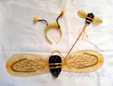 Набор карнавальный Пчела