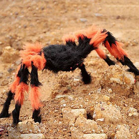 Павук волохатий, кольоровий на Хелловін, 45 см, Паук декоративный цветной на Хэллоуин