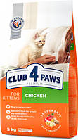 Сухой корм Клуб 4 Лапы Premium для котят, с курицей 5КГ