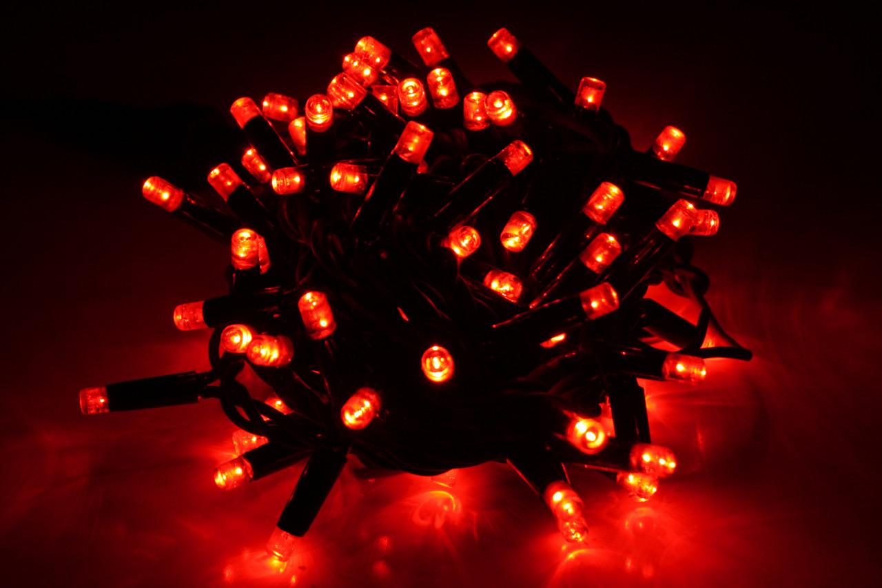 Уличная светодиодная гирлянда нить Lumion String Light стринг лайт 100 led цвет красный без каб пит