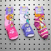 Носки стрейчевые , детские носочки с рисунком Щенячий патруль р. 31-34