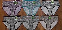 """Труси жіночі бамбукові """"Vanetti""""  L та XL Art: 7608, фото 1"""