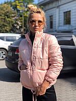 Куртка женская демисезонная, цвет: черный, пудра, белый, малина, фото 1