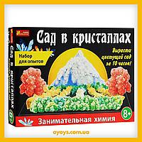 """Большой набор для экспериментов """"Сад в кристаллах"""" Ranok-Creative (12138011)"""